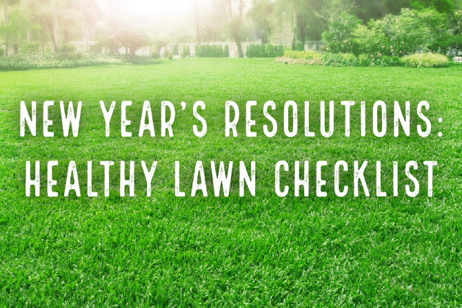 2017 New Year's Resolution: Healthy Lawn Checklist | Lawn Pride