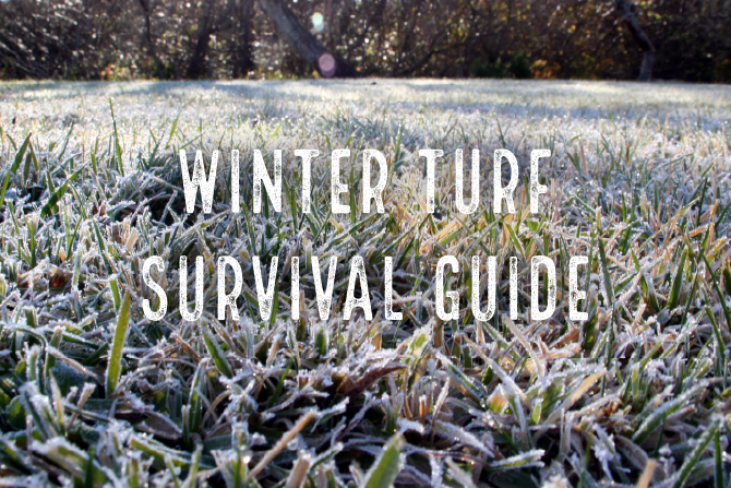 Snow & Frost Guide to Protecting Your Lawn in Winter