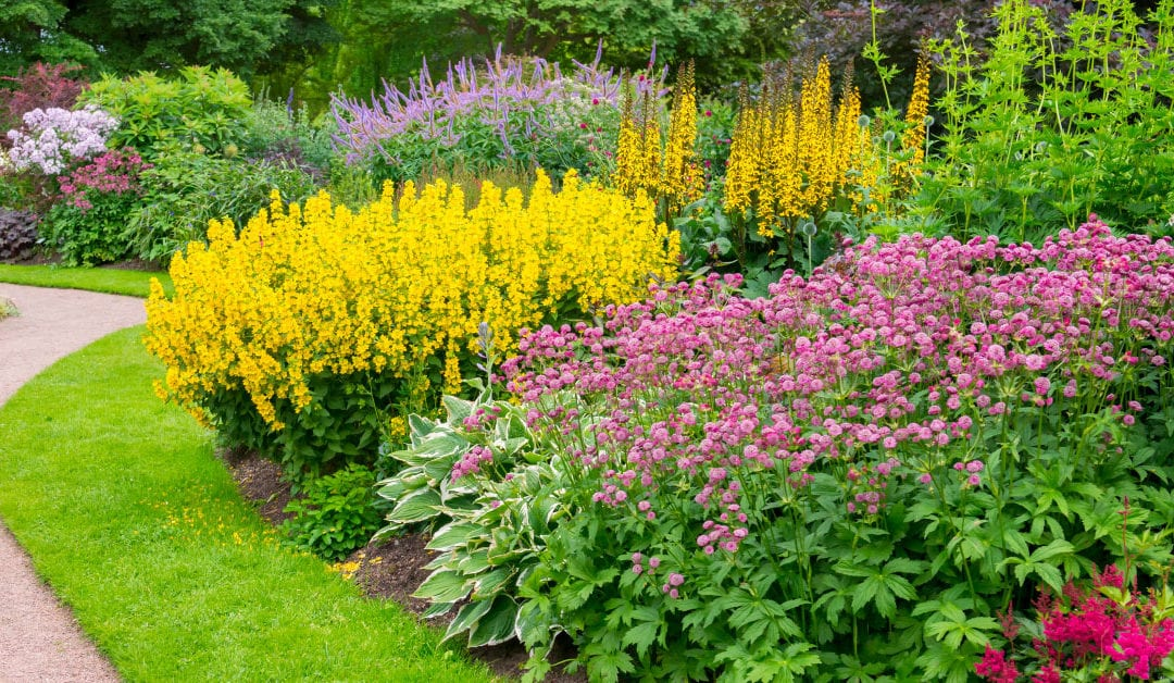 Tips for Planning Your Spring Garden