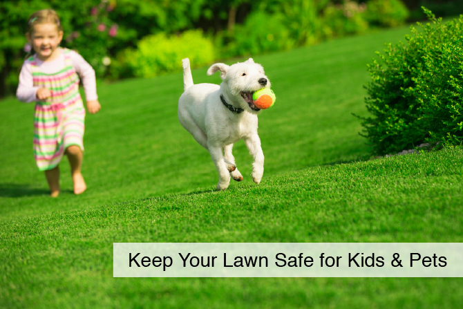 Keep Your Lawn Safe for Kids & Pets - Lawn Pride Products and Best Practices