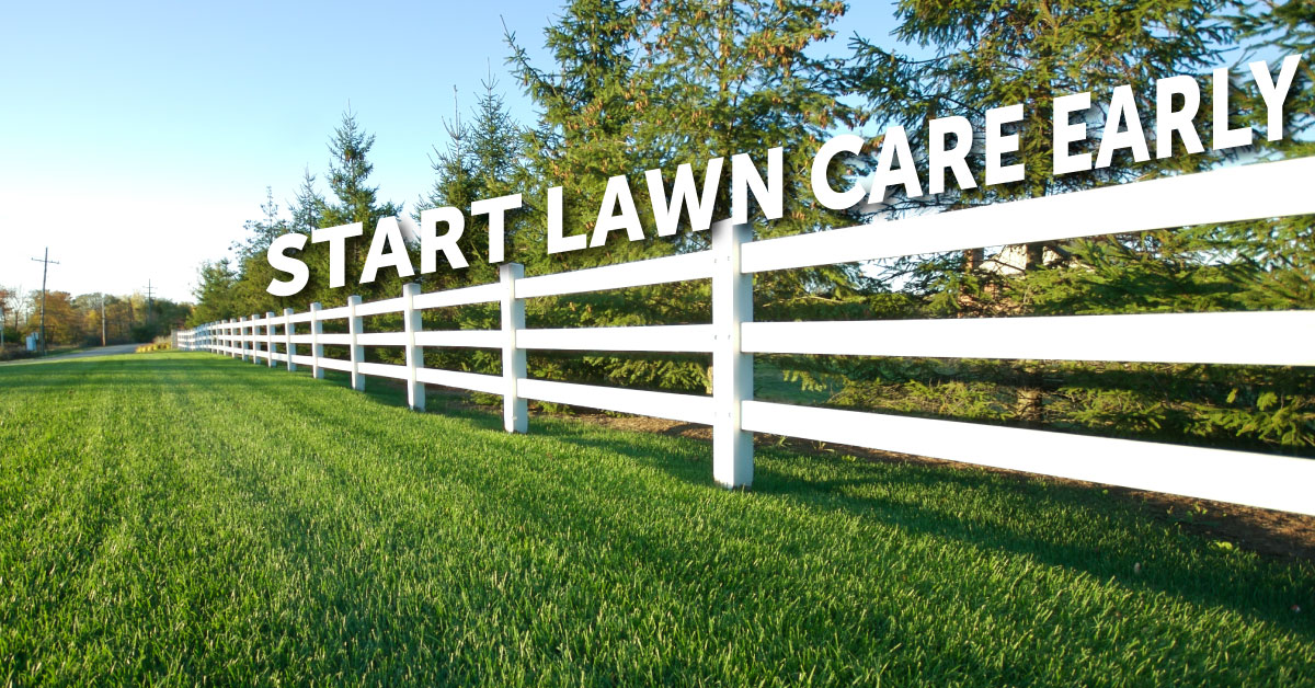 Early Lawn Care