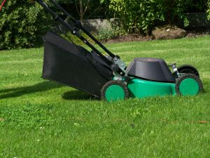 Indianapolis Lawn Mower