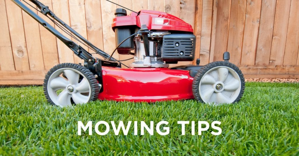 mowing-tips, Show Your Lawn Who's Boss: Must-Follow Mowing Tips, Lawn Pride, Lawn Pride