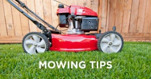 Mowing Lawn Care Tips