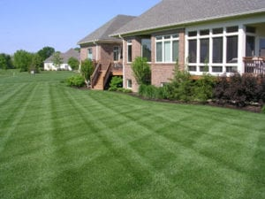 Zionsville, Carmel, Westfield, Fishers, Greenwood, Plainfield, Lawn Pride lawn care fertilization and weed control.