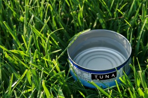 watering an indianapolis lawn with tuna