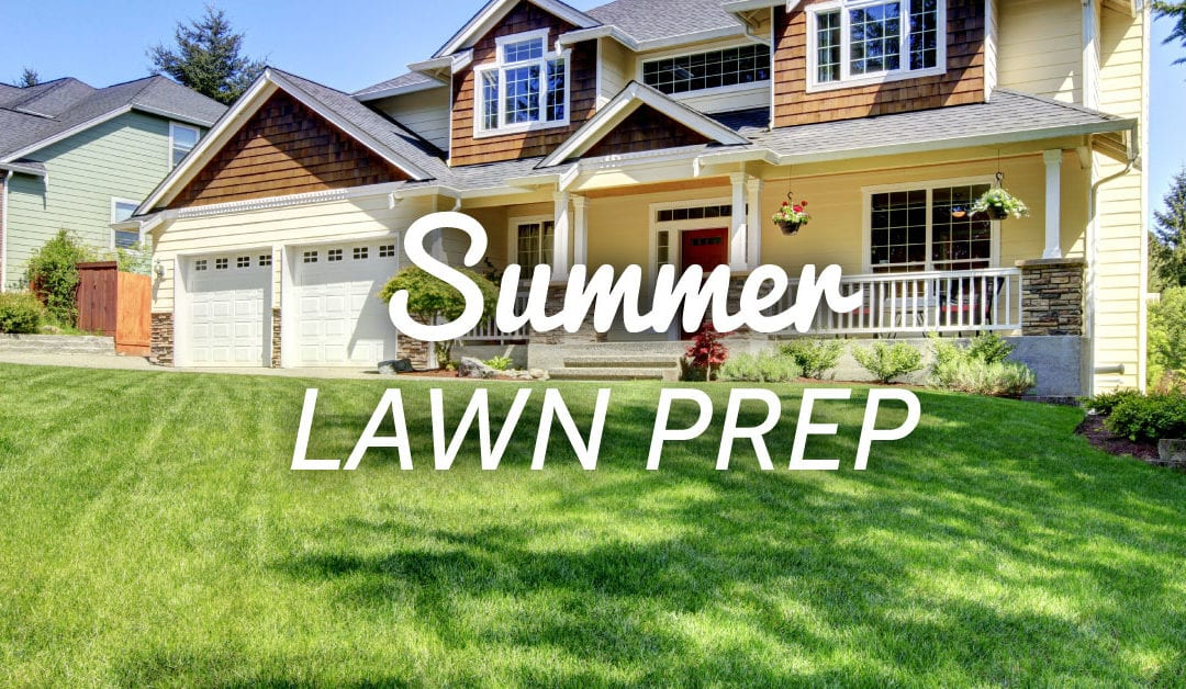 Summer Lawn Care Preparation