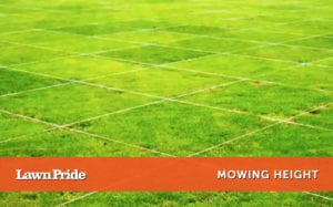 Mowing Tip - Mowing Height