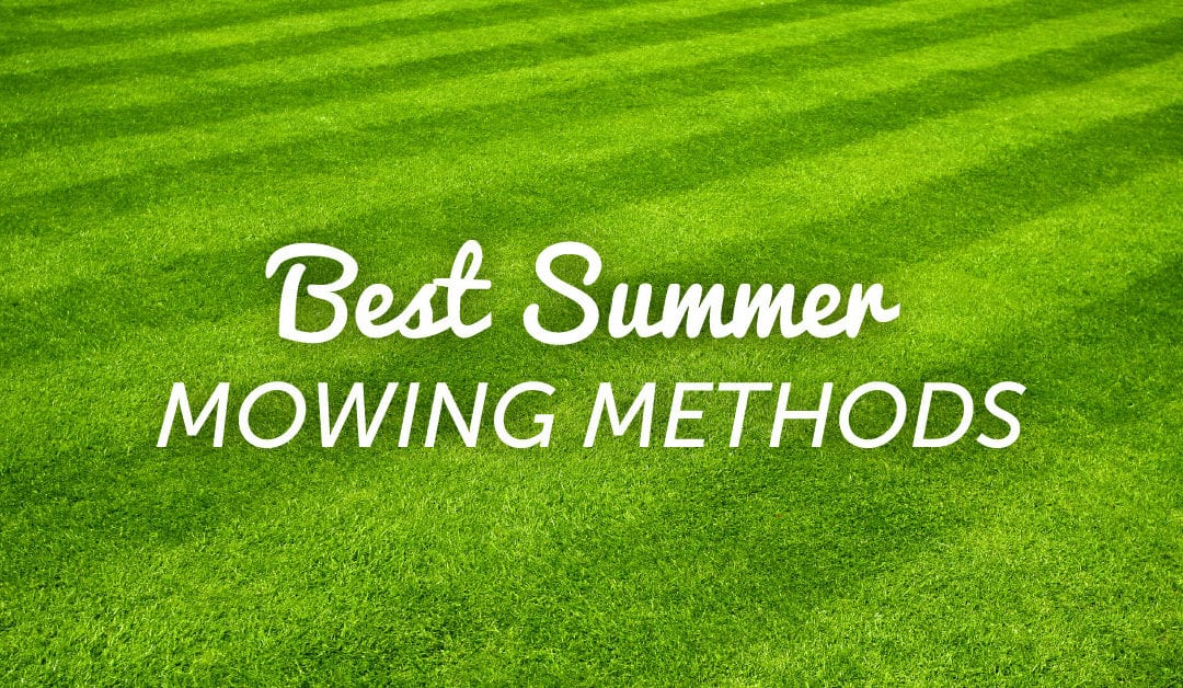 How to Master the Art of Mowing Your Lawn
