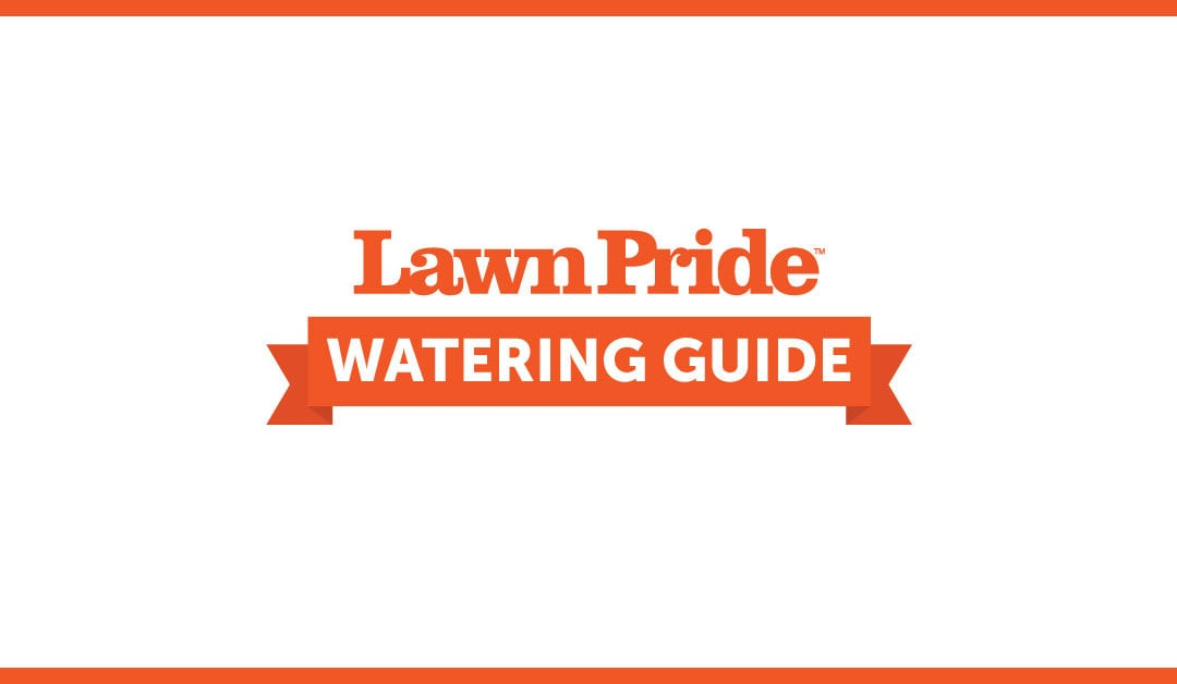 Your Weekly Lawn Watering Timeline