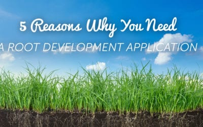Root Development: 5 Reasons This Is Crucial NOW                                        5/5(1)