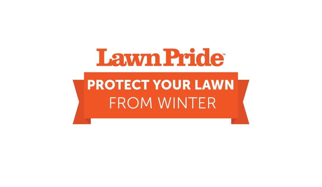 5 Ways to Protect Your Lawn This Winter