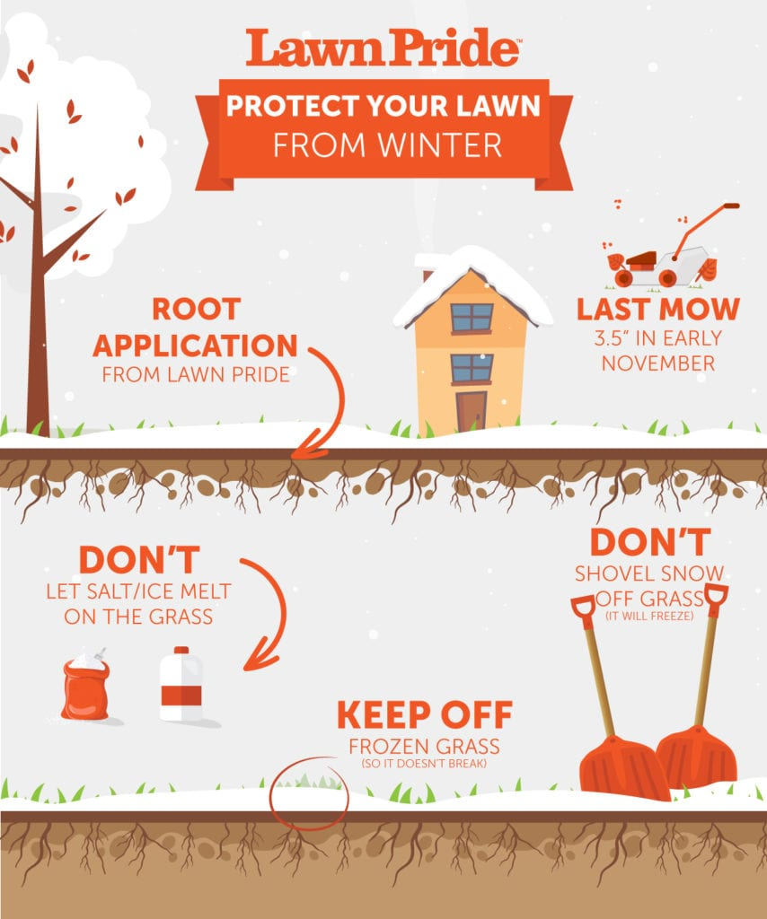 , 5 Ways to Protect Your Lawn This Winter, Lawn Pride