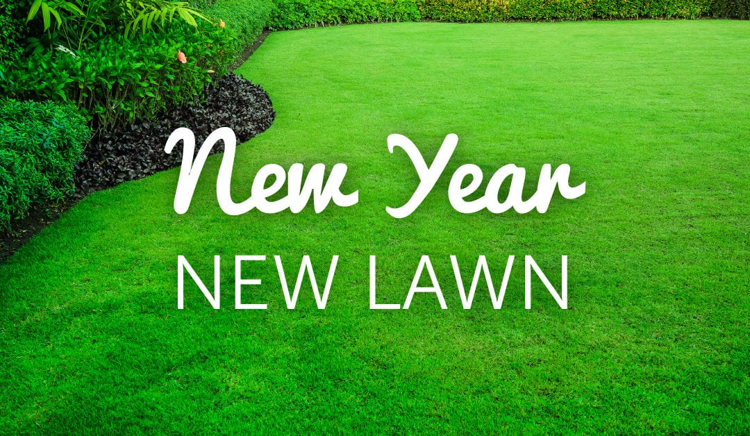 New Year, New Lawn No ratings yet.