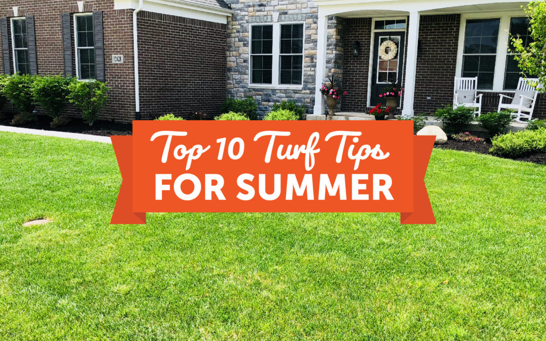 Top 10 Summer Turf Tips